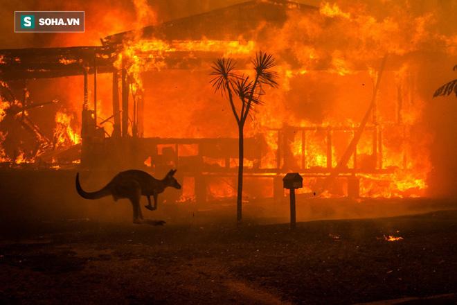Câu chuyện khí hậu năm 2020 sẽ diễn biến như thế nào khi những kỷ lục trước đó đã bị phá? - Ảnh 2.