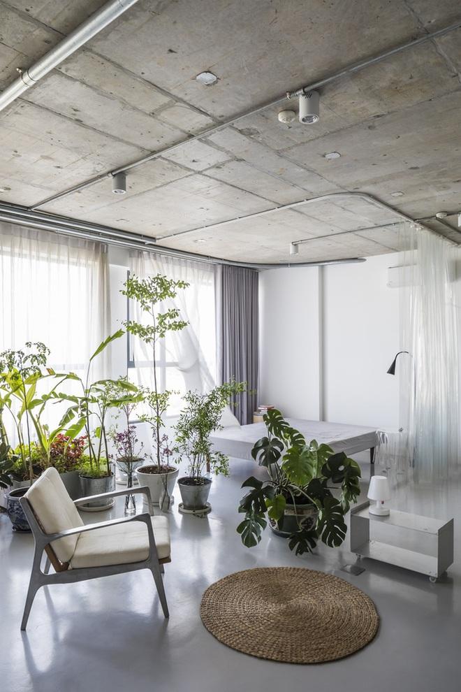 Tp.HCM: Mãn nhãn với căn hộ ngập tràn ánh sáng tự nhiên sau khi được cải tạo - Ảnh 2.