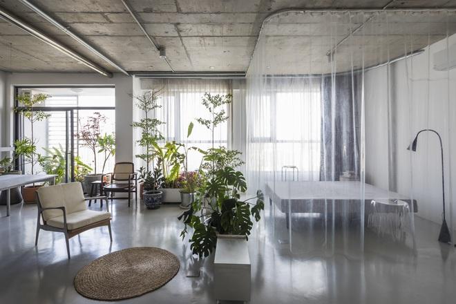 Tp.HCM: Mãn nhãn với căn hộ ngập tràn ánh sáng tự nhiên sau khi được cải tạo - Ảnh 5.