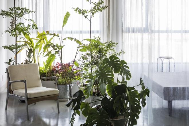 Tp.HCM: Mãn nhãn với căn hộ ngập tràn ánh sáng tự nhiên sau khi được cải tạo - Ảnh 6.