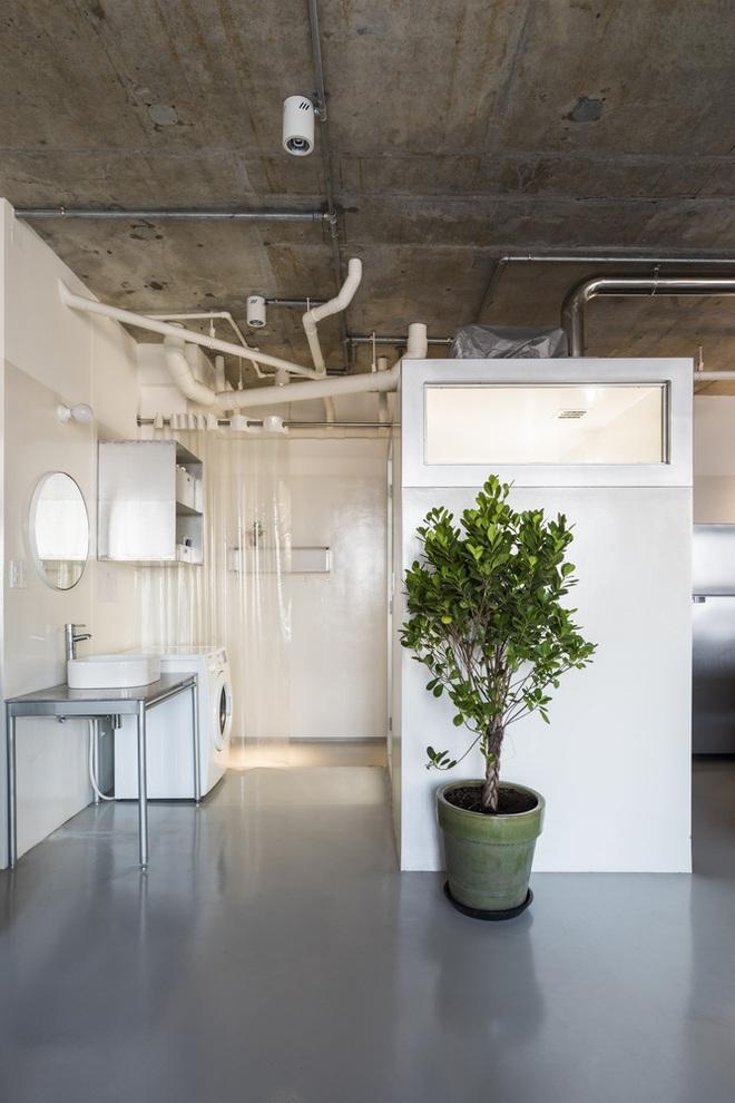 Tp.HCM: Mãn nhãn với căn hộ ngập tràn ánh sáng tự nhiên sau khi được cải tạo - Ảnh 9.