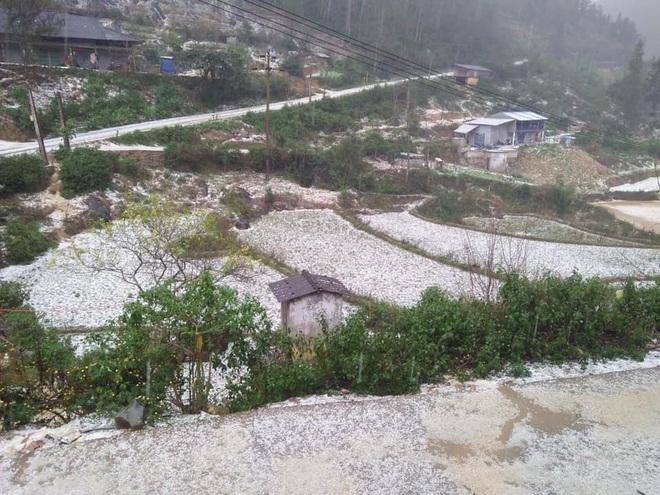 Gần 12.000 căn nhà hư hỏng, tốc mái do mưa đá trong ngày 30, mùng 1 Tết - Ảnh 2.