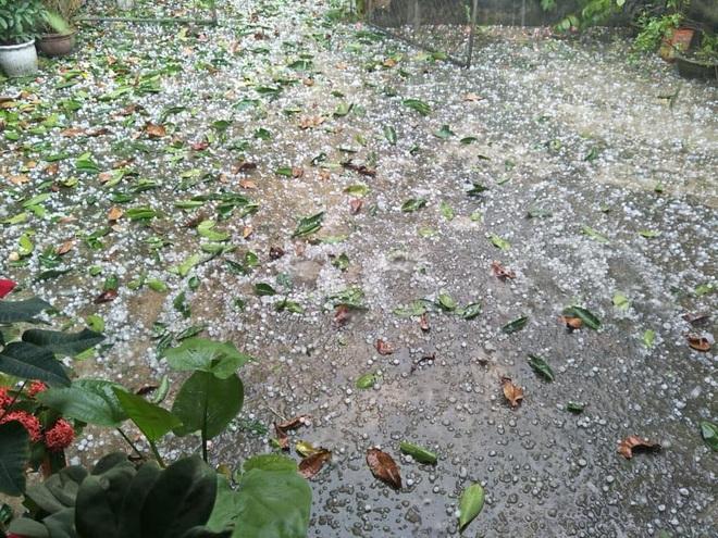 Mưa đá rơi trắng sân tại Hà Nội và một số tỉnh thành chiều mùng 1 Tết - Ảnh 2.