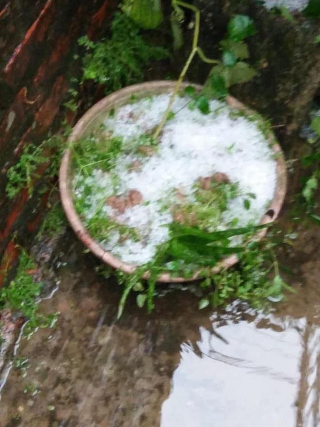 Mưa đá rơi trắng sân tại Hà Nội và một số tỉnh thành chiều mùng 1 Tết - Ảnh 4.