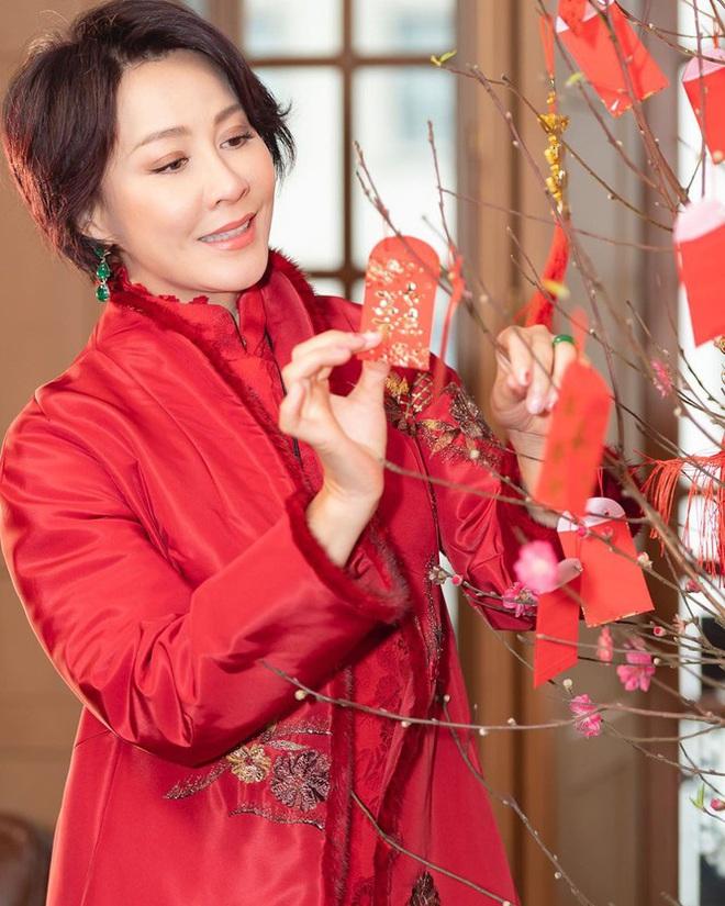 Lưu Gia Linh, Dương Mịch, Angelababy rạng ngời đón xuân - Ảnh 6.