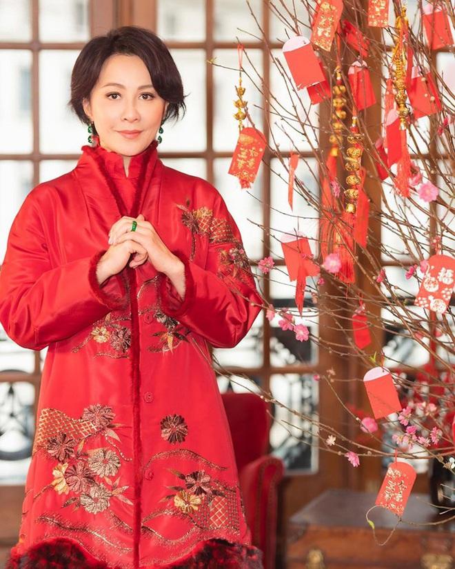 Lưu Gia Linh, Dương Mịch, Angelababy rạng ngời đón xuân - Ảnh 8.