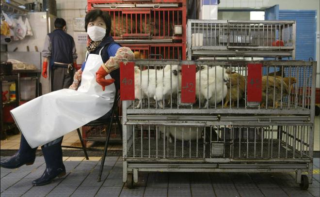 Báo Anh: TQ hành động bất thường, nghi ngờ che giấu số liệu thực về dịch viêm phổi Vũ Hán - Ảnh 2.