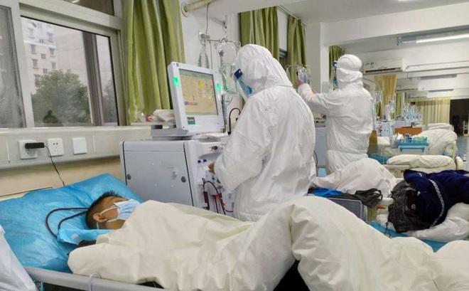 Virus corona xâm nhập tới 12 quốc gia, Việt Nam ghi nhận 63 trường hợp nghi ngờ mắc bệnh