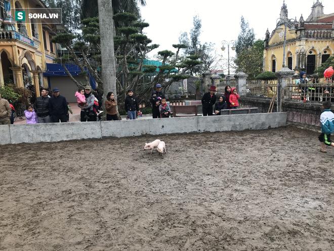 Độc đáo hội chợ câu vịt, bịt mắt bắt lợn tổ chức 1 năm 1 lần  - Ảnh 5.