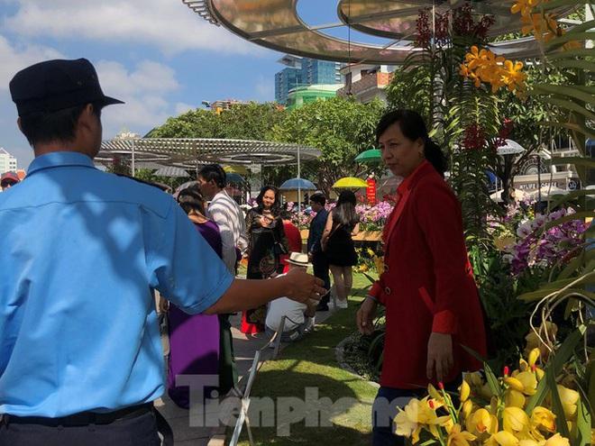 Vì sao tiểu cảnh ở phố đi bộ Nguyễn Huệ tả tơi - Ảnh 27.
