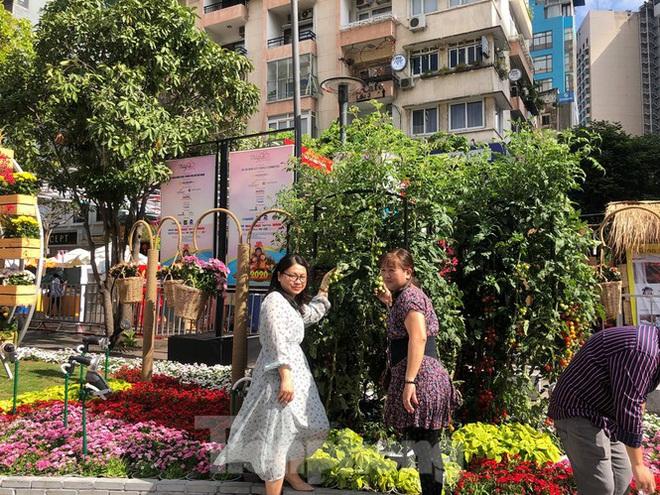 Vì sao tiểu cảnh ở phố đi bộ Nguyễn Huệ tả tơi - Ảnh 28.