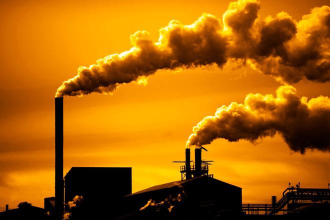 Bất ổn kẹp chặt thế giới: Hơn 1 vạn nhà khoa học tuyên bố tình trạng đáng sợ của Trái Đất - Ảnh 4.