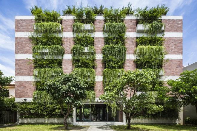 Khách sạn cây xanh độc đáo bậc nhất Việt Nam - Ảnh 1.