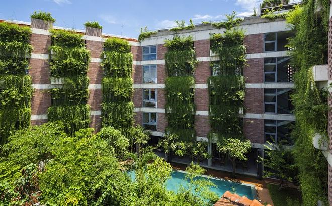 Khách sạn cây xanh độc đáo bậc nhất Việt Nam