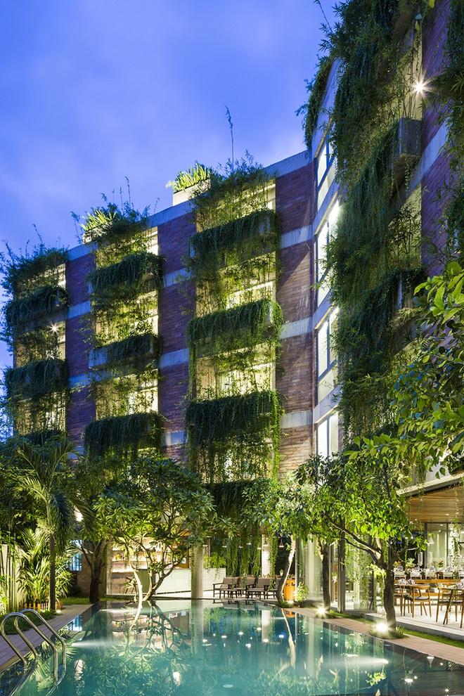 Khách sạn cây xanh độc đáo bậc nhất Việt Nam - Ảnh 2.