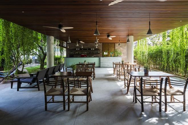 Khách sạn cây xanh độc đáo bậc nhất Việt Nam - Ảnh 3.