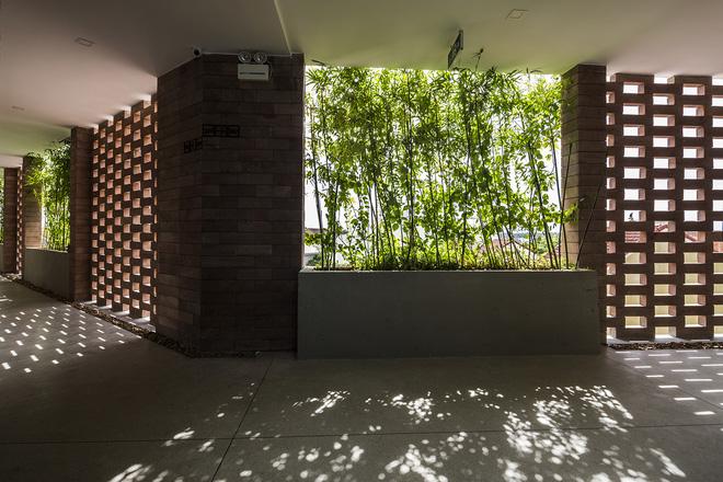 Khách sạn cây xanh độc đáo bậc nhất Việt Nam - Ảnh 11.