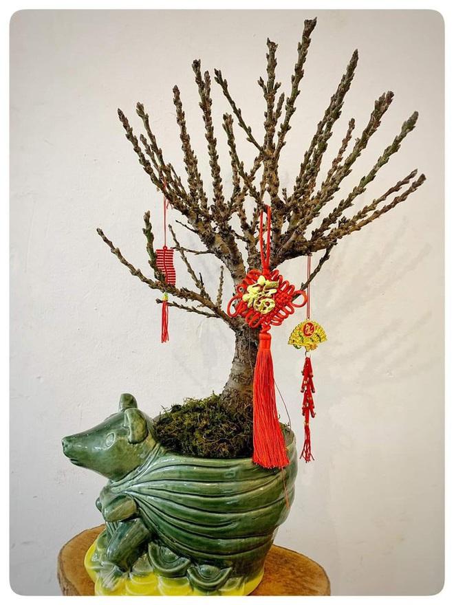 Hoa lạ từ Trung Quốc hút khách hàng chơi trước Tết cả tháng - Ảnh 3.