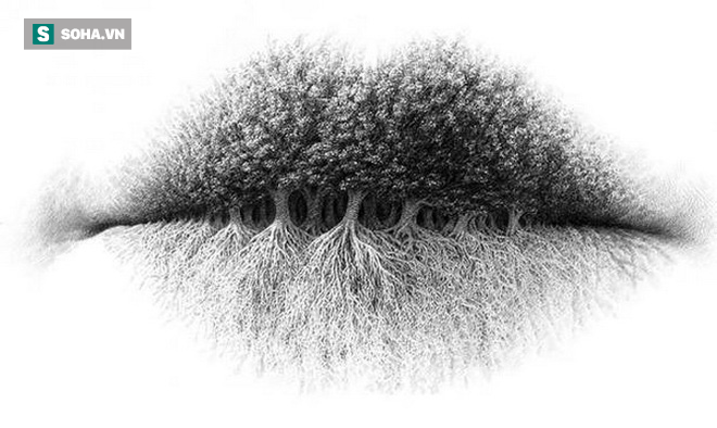 Bạn nhìn thấy hình ảnh gì trước tiên? Người tinh tế sẽ thấy rừng cây - Ảnh 1.