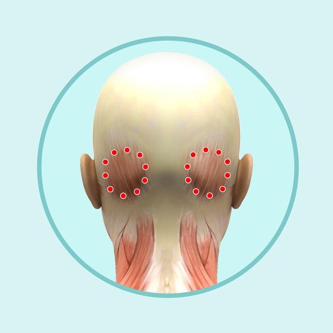 Bài mát xa đầu giúp trẻ hóa toàn bộ khuôn mặt, lưu thông khí huyết và ngăn ngừa bệnh tật - Ảnh 7.