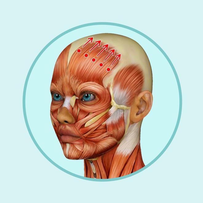 Bài mát xa đầu giúp trẻ hóa toàn bộ khuôn mặt, lưu thông khí huyết và ngăn ngừa bệnh tật - Ảnh 5.