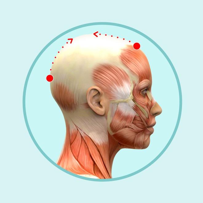 Bài mát xa đầu giúp trẻ hóa toàn bộ khuôn mặt, lưu thông khí huyết và ngăn ngừa bệnh tật - Ảnh 4.