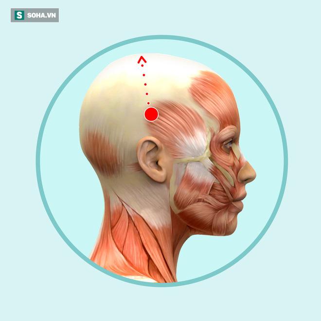 Bài mát xa đầu giúp trẻ hóa toàn bộ khuôn mặt, lưu thông khí huyết và ngăn ngừa bệnh tật - Ảnh 2.
