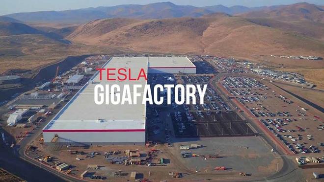 Siêu nhà máy Tesla tại Berlin có thể bị trì hoãn việc xây dựng do... dơi - Ảnh 2.