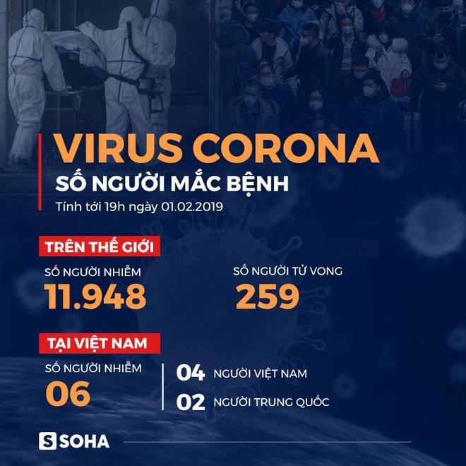Hải Phòng có thêm 4 trường hợp nghi nhiễm virus Corona - Ảnh 2.