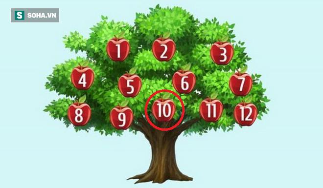 Hãy chọn một quả táo để phán đoán chuyện sắp xảy ra: Số 6, thành công song hành với bạn - Ảnh 10.
