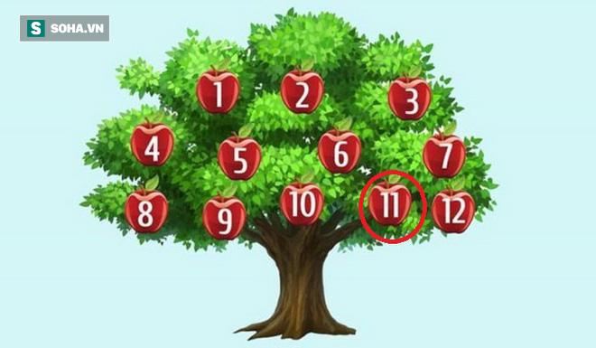 Hãy chọn một quả táo để phán đoán chuyện sắp xảy ra: Số 6, thành công song hành với bạn - Ảnh 11.