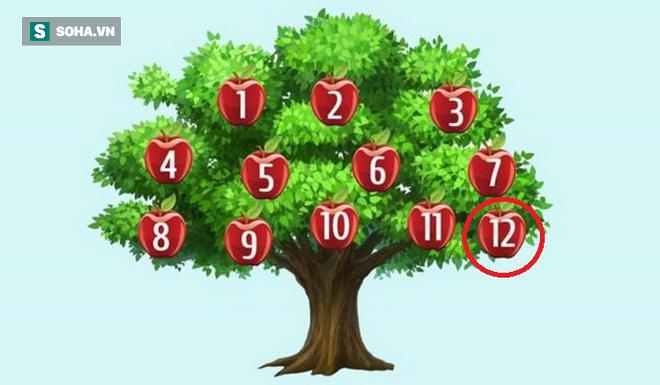 Hãy chọn một quả táo để phán đoán chuyện sắp xảy ra: Số 6, thành công song hành với bạn - Ảnh 12.
