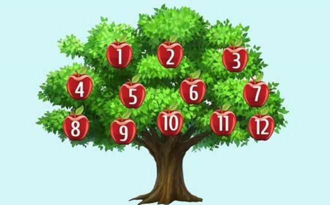 Hãy chọn một quả táo để phán đoán chuyện sắp xảy ra: Số 6, thành công song hành với bạn