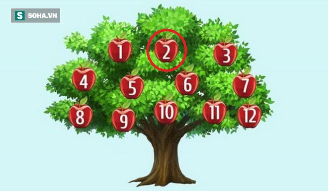 Hãy chọn một quả táo để phán đoán chuyện sắp xảy ra: Số 6, thành công song hành với bạn - Ảnh 2.