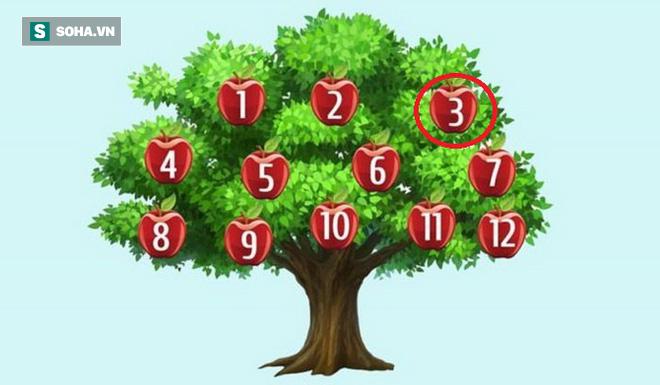 Hãy chọn một quả táo để phán đoán chuyện sắp xảy ra: Số 6, thành công song hành với bạn - Ảnh 3.