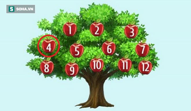 Hãy chọn một quả táo để phán đoán chuyện sắp xảy ra: Số 6, thành công song hành với bạn - Ảnh 4.