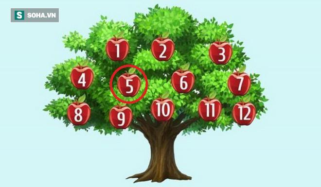 Hãy chọn một quả táo để phán đoán chuyện sắp xảy ra: Số 6, thành công song hành với bạn - Ảnh 5.