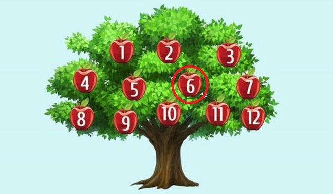 Hãy chọn một quả táo để phán đoán chuyện sắp xảy ra: Số 6, thành công song hành với bạn - Ảnh 6.