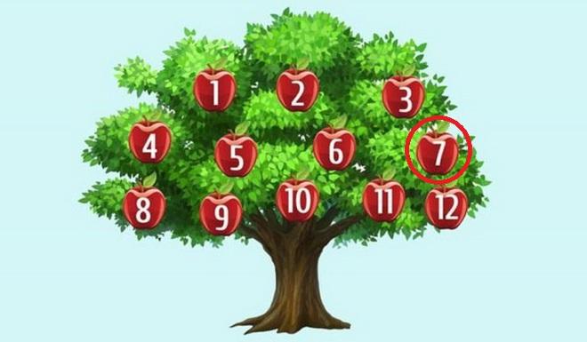 Hãy chọn một quả táo để phán đoán chuyện sắp xảy ra: Số 6, thành công song hành với bạn - Ảnh 7.