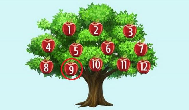 Hãy chọn một quả táo để phán đoán chuyện sắp xảy ra: Số 6, thành công song hành với bạn - Ảnh 9.