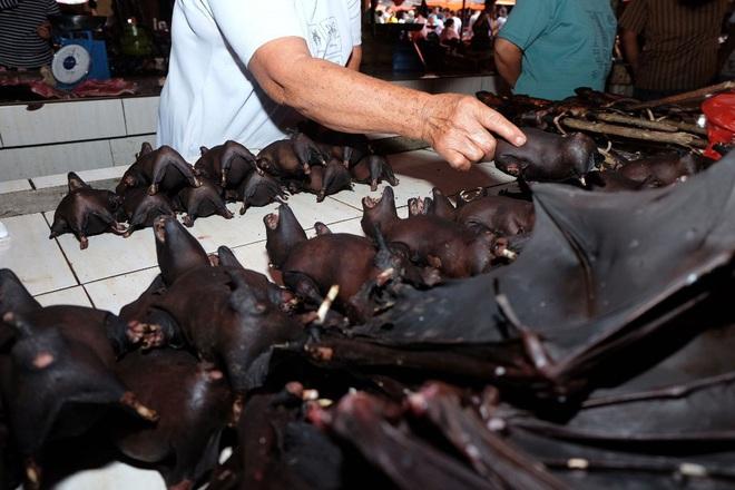 24h qua ảnh: Thịt dơi được bán la liệt tại chợ nổi tiếng Indonesia - Ảnh 2.