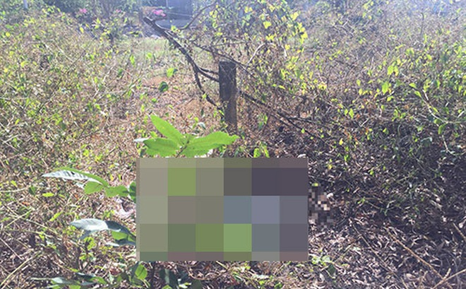 Phát hiện thi thể phụ nữ đang phân huỷ trong bụi rậm ở Bình Thuận
