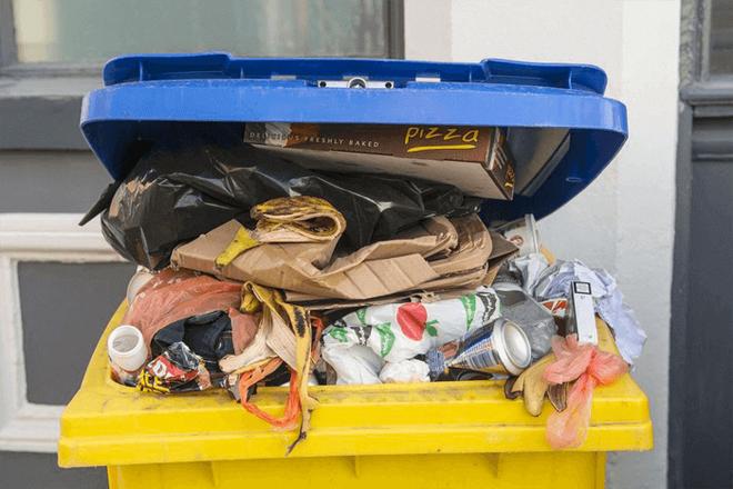 Cách đơn giản để giúp các thùng rác nhà bạn khỏi mùi khó chịu và sạch bóng côn trùng - Ảnh 3.
