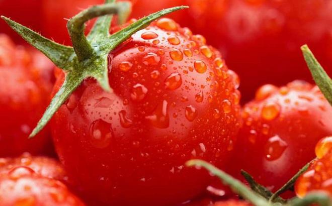 Công dụng đáng ngạc nhiên của cà chua trong việc cải thiện chất lượng tinh trùng
