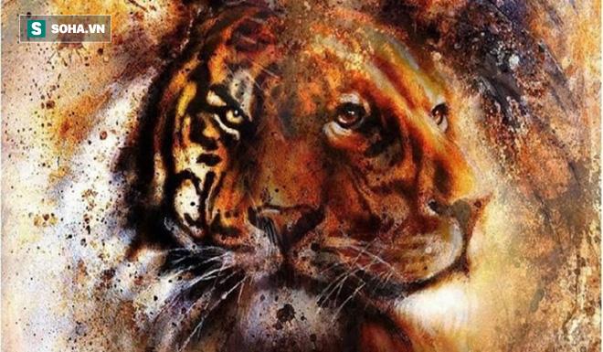 Thấy sư tử hay hổ trước tiên? Câu trả lời sẽ phản ánh tính cách của bạn! - Ảnh 1.
