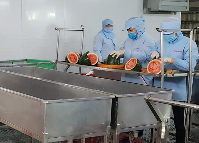 Dịch Covid-19: Xuất hiện bún dưa hấu siêu lạ, vừa ra lò đã xuất khẩu sang Hàn Quốc - Ảnh 1.