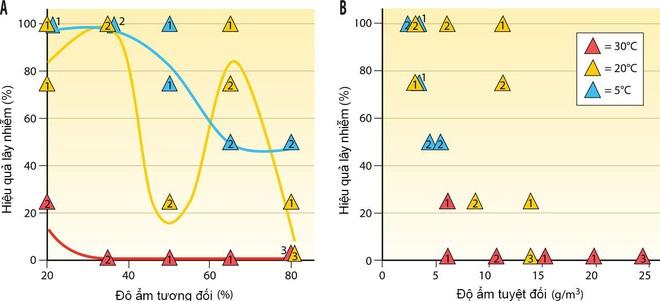 """Chuyện kể từ phòng thí nghiệm nghiên cứu virus cúm: Những đặc tính kỳ lạ của """"con cúm - Ảnh 8."""