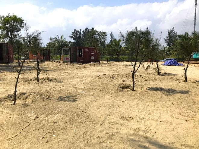 Cận cảnh cả trăm nhà bằng container trái phép trong rừng phòng hộ ven biển Xuân Thành - Ảnh 23.