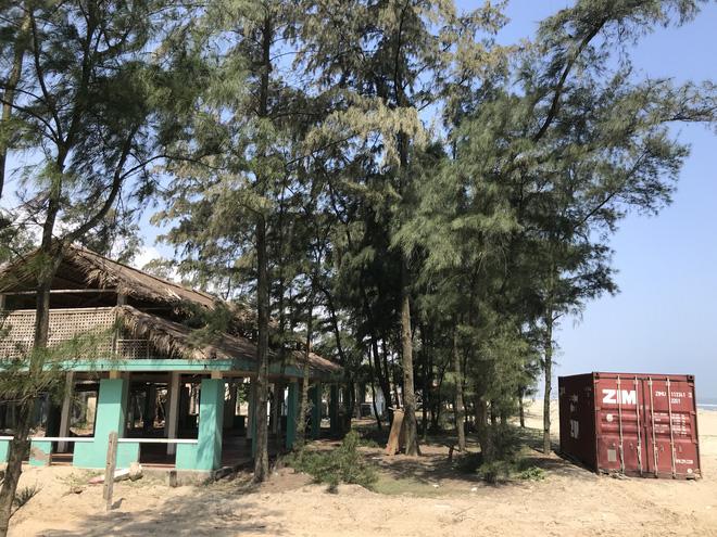 Cận cảnh cả trăm nhà bằng container trái phép trong rừng phòng hộ ven biển Xuân Thành - Ảnh 24.