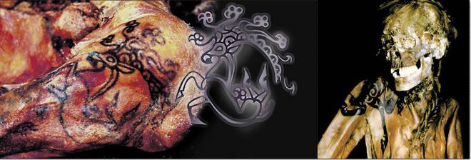 Tìm thấy xác chim 46.000 năm vẫn còn nguyên - Ảnh 3.